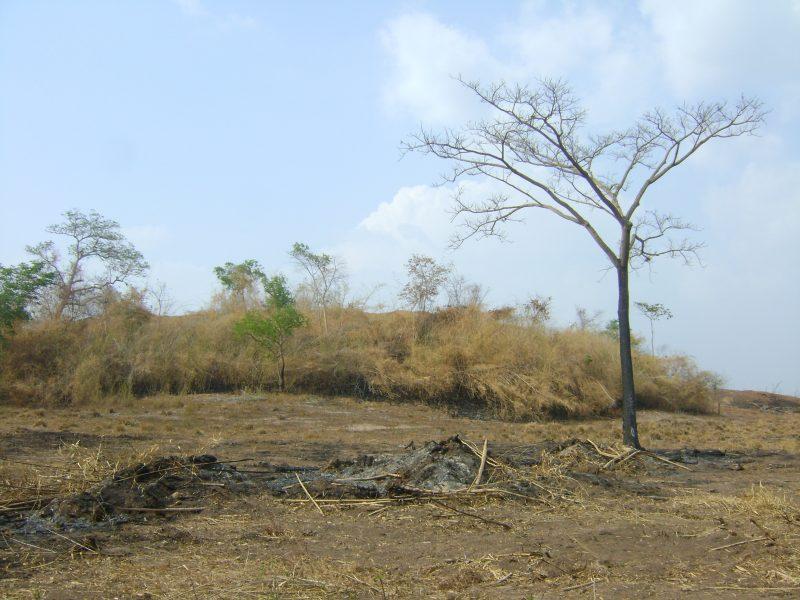 Sequía 4