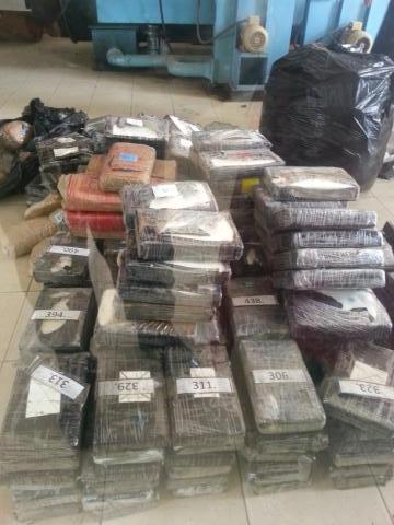 Incineradas más de 770 kilos de droga por parte de la GNB y la Fiscalía / Diario Republica
