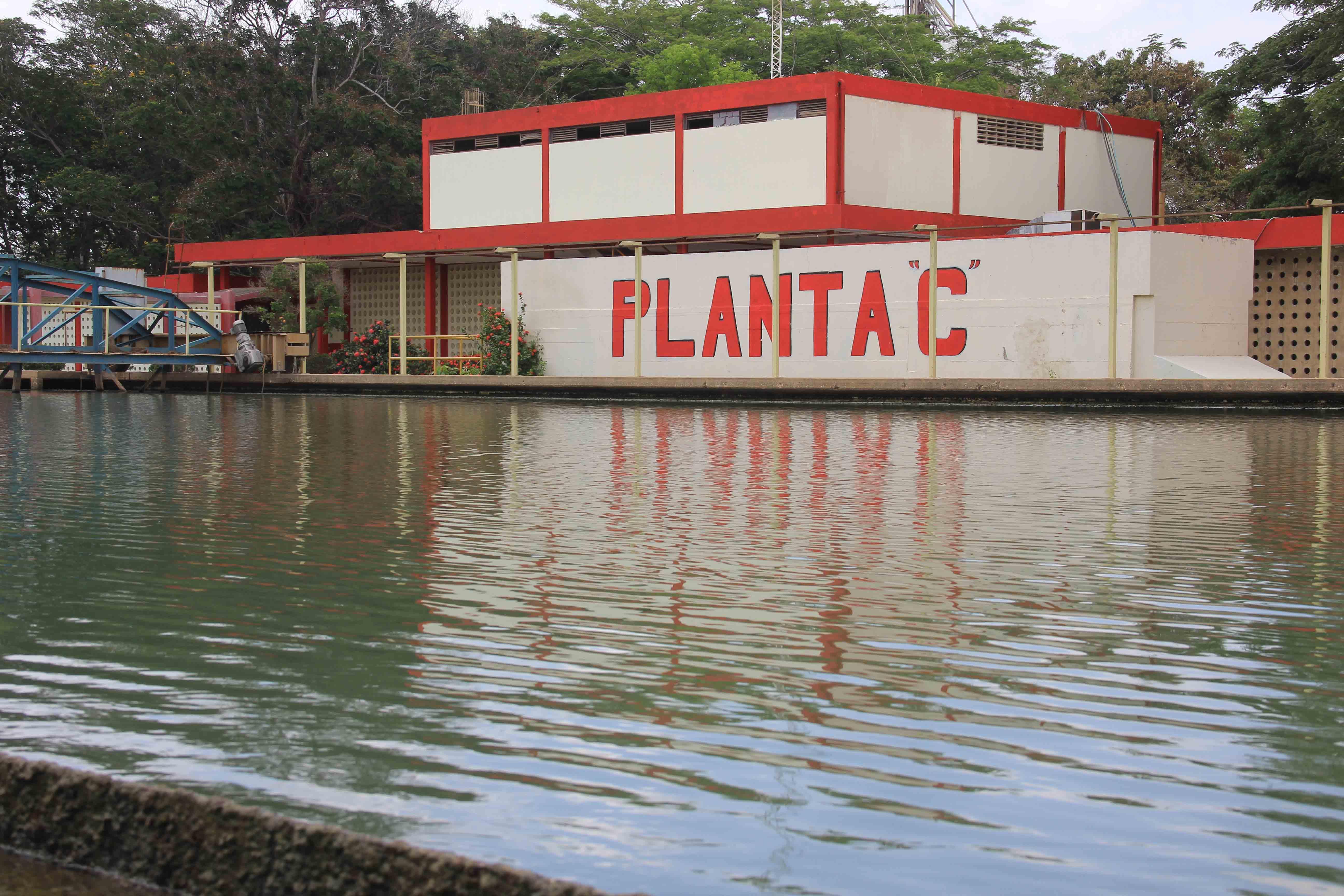Culminan trabajos en Planta C